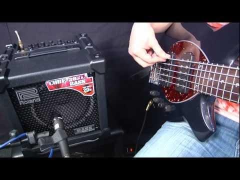 Roland Bass Cube CB20XL