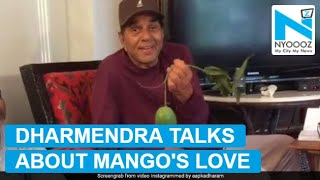 Dharmendra's love for mangoes is unmissable..