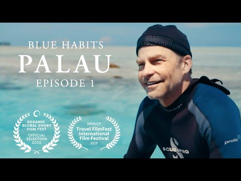 As part of a new partnership between Oceanic Society and SC Johnson to drive public engagement in ocean conservation, Oceanic Society brought Fisk Johnson, Chairman and CEO of SC Johnson, to scuba dive in Palau's Rock Islands with ocean experts from Oceanic Society and Mission Blue, and the president of Palau, Tommy Remengesau to explore the global issue of ocean plastic pollution through the lens of one of the world's leading business leaders.