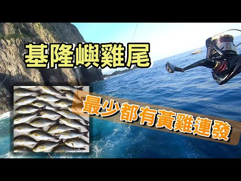 重po 【傑森磯釣】基隆嶼磯釣 雞尾 保底黃雞魚連發 其它不一定 Taiwan RockFishing Keeling Island Fishing