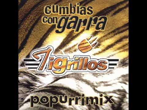 Los Tigrillos - Popurri Mix Vol. 1