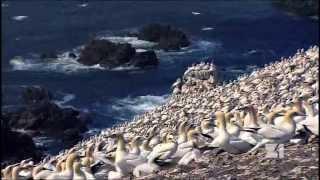 Planéta Zem zhora - 6 - More nás potrebuje tak ako my jeho 2