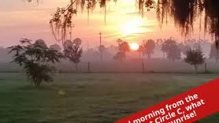 Good morning from the pastures at Circle C, what a beautiful sunrise!