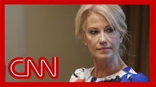 Federal office says Kellyanne Conway should be removed from government