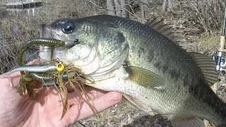 Which of my Top 3 Late Winter/Early Spring Northeast Baits Catch the most Bass