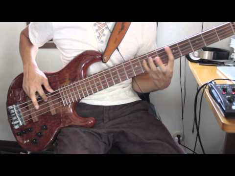 Red Hot Chili Peppers - 21st Century  [Bass Cover]