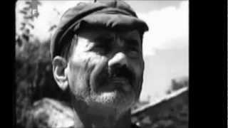 Terra Slaves - Hercegovina