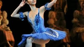 Blue bird variation music