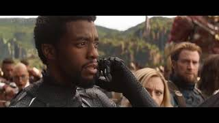 Avengers Infinity War Final Battle  Wakanda Battle  Full HD