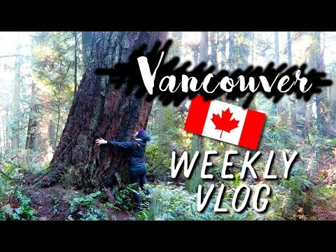 Vacation in Vancouver, Canada   VLOG