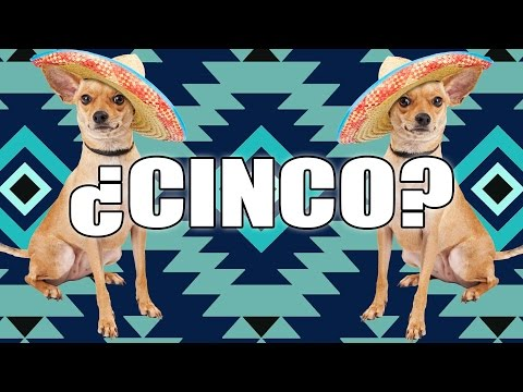 Facts You Didn't Know About Cinco De Mayo