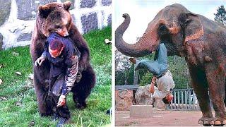 12 Times Animals Took Revenge On Humans