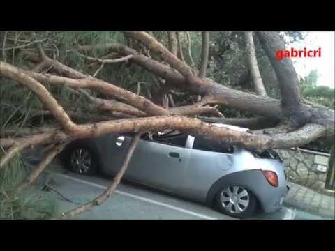 Maltempo Toscana vento da fortissimo devasta Forte dei Marmi