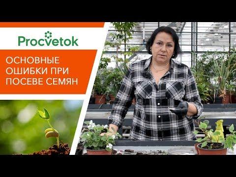 Посев семян. Разбор основных ошибок. Отвечаем на ваши вопросы