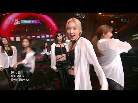 Alligator - 우주소녀(WJSN) [뮤직뱅크 Music Bank] 20190628
