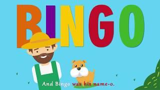 Motion Graphic : Bingo Song
