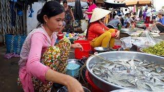 Du lịch khám phá huyện Chợ Mới || Cho Moi District Discovery || Vietnam Discovery Travel