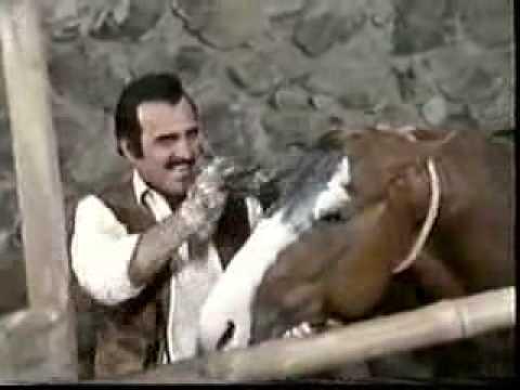 Vicente Fernández - Si Te Vas No Hay Lio