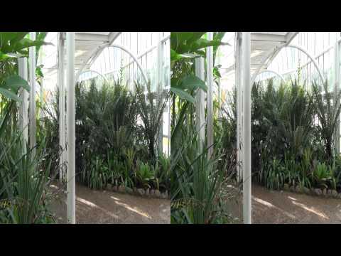 3D - Jardim Botânico 2012 Curitiba - Sony HDR-TD10