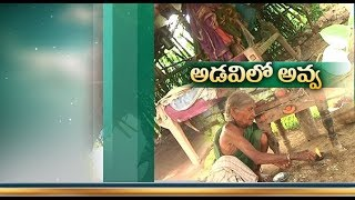 Woman living in forest from 30 years in Adilabad!..