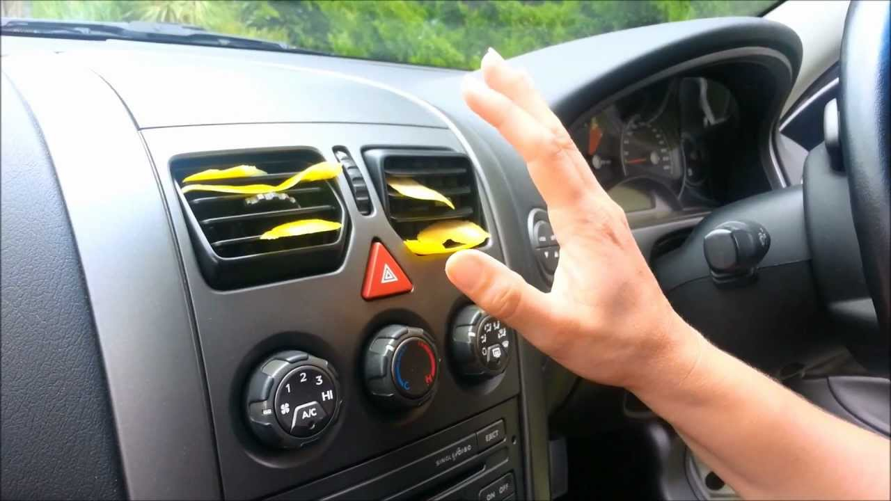 Getting Rid Of Spiders In Your Car