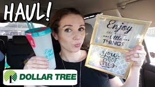 DOLLAR TREE HAUL! 3-21-19