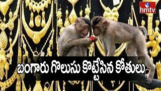 Monkeys snatch gold chains from VRO's house in Telangana..