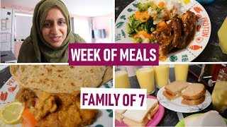 A Week of Meals for a Family of 7 | What We Ate | Meal Ideas | March 2019 | Shamsa