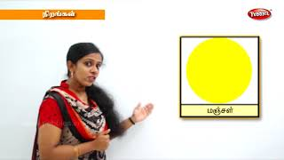 Learn colors for children Toddlers Kids | Nirankal payirchi | Preschool Learning | நிறங்கள்