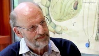 Arnold Van Huis - Edible Insects