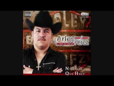 Me canse de rogarle (Con Tuba y Tololoche) - Arley Perez