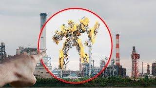 5 Bumblebees Transformers REALES Captados en Cámara