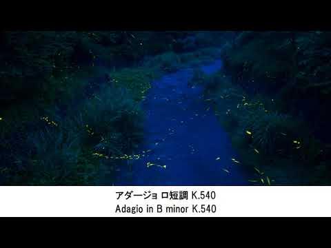 ぐっすり眠れるモーツァルト名曲集・Sleepy Mozart Collection(快眠用BGM)
