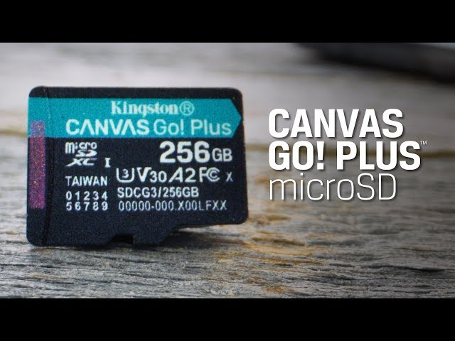 Карта памяти MicroSD Kingston Canvas Go Plus 64Gb SDCG3/64GB ...