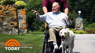 Inside George H.W. Bush's Special Bond With Service Dog Sully | TODAY