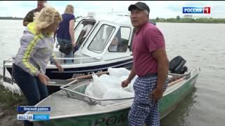 Очередную партию мальков стерляди выпустили в Иртыш