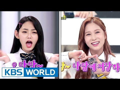 WJSN Dayoung & Gugudan Mina show off their Jeju Island dialect aegyo! [Happy Together/2017.08.31]
