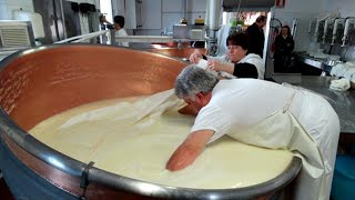 INSIDE THE FACTORY | CHEESE MAKING & DAIRY MAKING