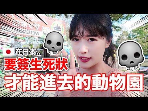 【危險】要簽生死狀才能進去!日本最危險的動物園也太可怕了!!