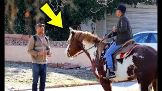 PICKING UP UBER RIDERS WITH A HORSE! (FUNNY PRANKS 2019)