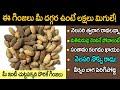 గుప్పెడు గింజలు 00 మంది డాక్టర్స్ తో సమానం  || Raavi chettu Ginjalu || Health Benefits