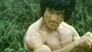 Dragão de Fogo (Dragon Lee Dublado) The Dragon, The Hero