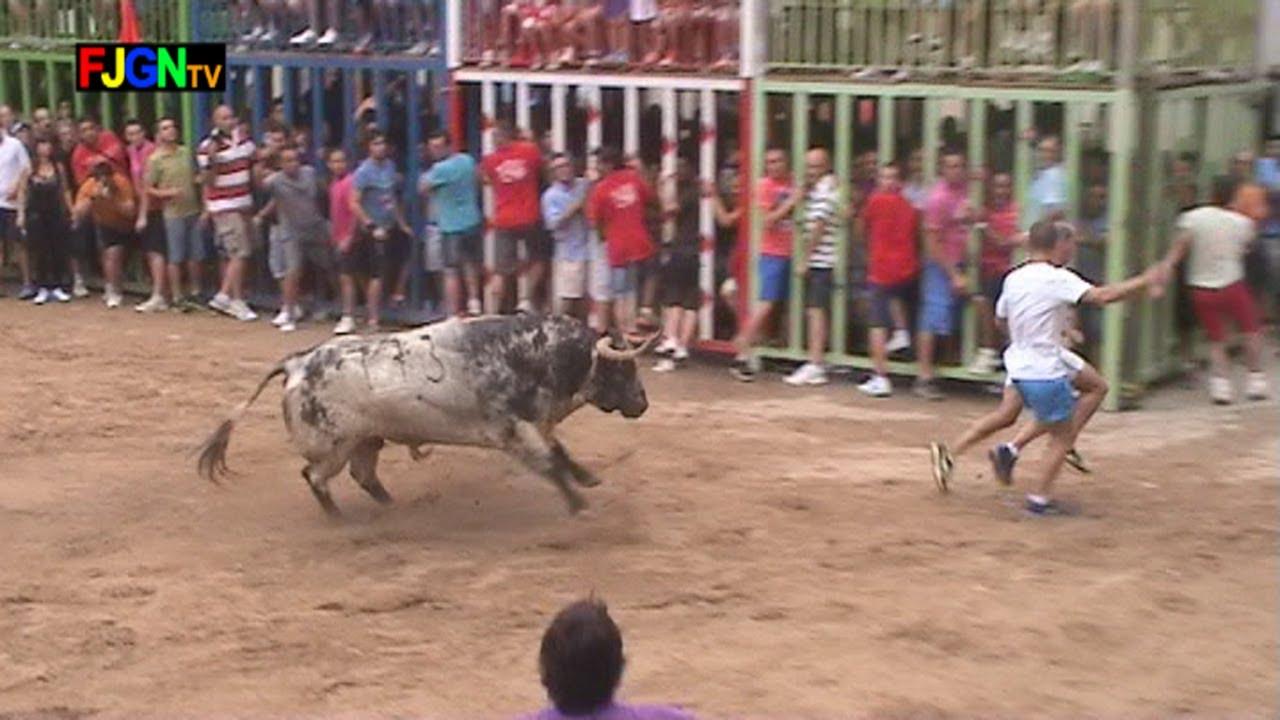 10 Toros fiestas Sant Bartomeu 2013 - Nules