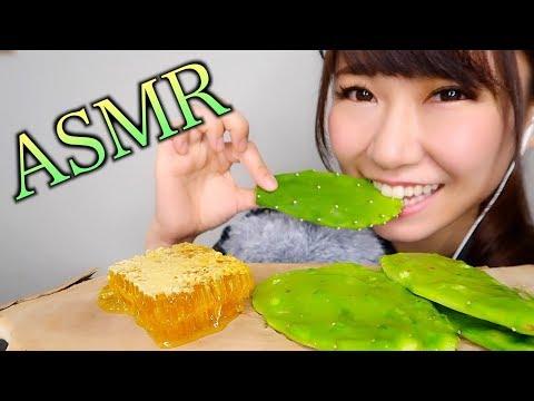 【ASMR】サボテンに蜂蜜のせて食べる音