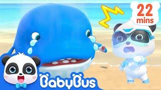 Baby Whale Got Injured | Super Panda Rescue Team | Panda Cartoon | Kids Song | BabyBus