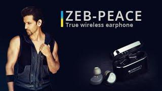 Zebronics Peace