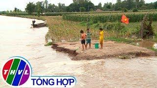 THVL l Ký sự truyền hình: Về cù lao Long Khánh