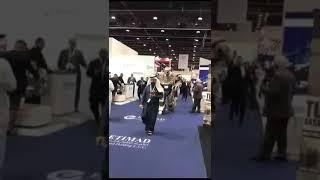 Robot walking Dubai