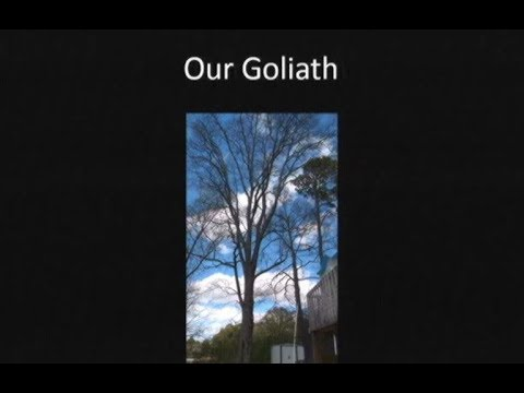 Our Goliath (Testimony) - Ryan Bonnette