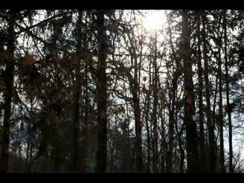 Fleur - Уходи, февраль